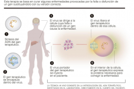 Frente común para luchar contra las enfermedades raras