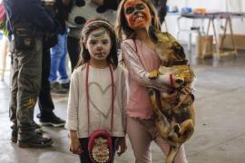 Un festival para dar amor y un hogar a animales rescatados