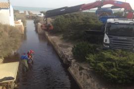 Formentera realiza una actuación de limpieza de posidonia en Sa Sequi