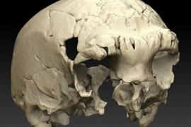 Descubierto el fósil humano más occidental de Europa, de hace unos 400.000 años