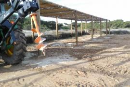 Formentera repone los sombrajos en los aparcamientos de ses Illetes