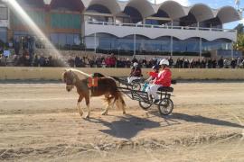 Destinan 800.000 euros a la reforma y potenciación del hipódromo de Sant Rafel