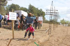 Red Eléctrica mantiene su apuesta por el polémico proyecto original de es Fornàs