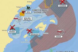 El Congreso aprueba proteger el Corredor de Migración de Cetáceos en el Mediterráneo