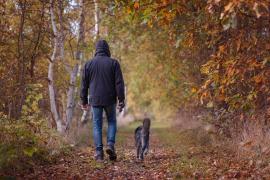 Mata a su hijo durante una discusión por ver quién sacaría a pasear al perro