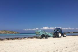 Formentera limpia las playas para recibir a los primeros visitantes