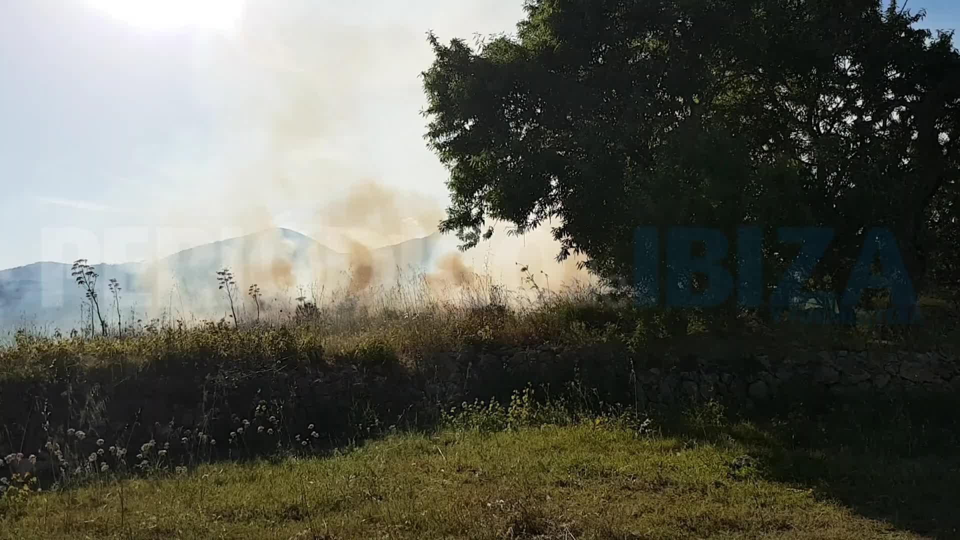 Incendio sin consecuencias junto al recinto ferial de Vila