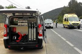 El detenido por el atropello mortal de un ciclista declara hoy por homicidio imprudente
