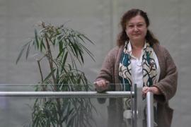 Podemos defiende en Bruselas la regulación integral del cannabis
