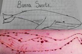 El primer caso del reto suicida 'la ballena azul' causa heridas a una menor de Palma