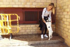 Condenada la pareja que echó de casa a una joven y su perro por las molestias del animal