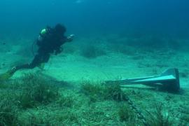 El sector náutico avisa que el decreto de posidonia puede privatizar el mar