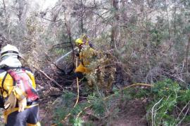 Vigilan la zona afectada por el incendio de Formentera para evitar que se reavive el fuego