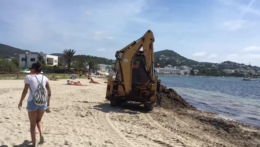 Una excavadora trabaja entre bañistas a pleno mediodía en la playa de Talamanca