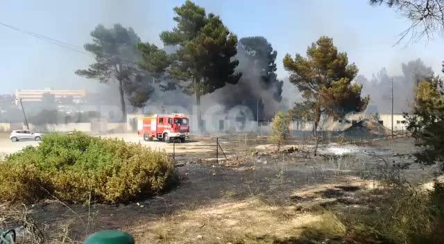 Un incendio pone en jaque el Port des Torrent y obliga al desalojo de vecinos y bañistas