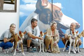 P | Art Ibiza acoge 'Passion 4 podenco' con gran éxito