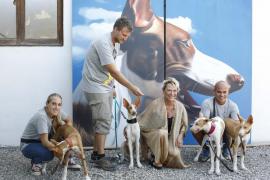 P   Art Ibiza acoge la acción solidaria `Passion 4 Podenco'