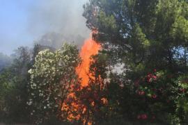 Sobresalto por un incendio en el acceso a ses Salines