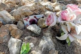 Santa Eulària estudiará la posibilidad de construir un crematorio para mascotas