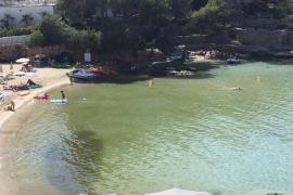 El PSOE de Sant Joan critica el retraso del inicio de la bomba hidráulica de Portinatx