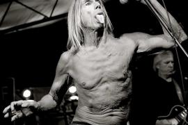 Fotografías de los grandes del rock para el Dorado Ibiza Suites