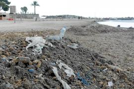Empresarios y vecinos de es Viver reclaman a Vila que limpie y retire las algas de la playa