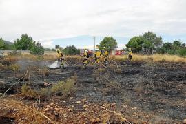 Vecinos advierten la intencionalidad de una sucesión de incendios en una zona de Cala de Bou