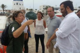 Formentera ha reubicado en 15 días un total de 546 embarcaciones que fondeaban sobre posidonia