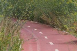 """El PP denuncia el estado """"deplorable"""" del carril bici de la vía de Sant Miquel"""