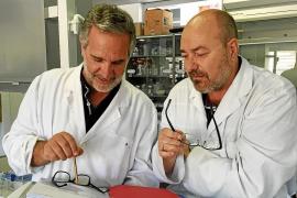 La UE subvenciona con 6 millones de euros el proyecto de investigación del Minerval