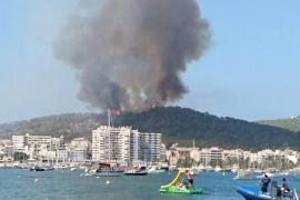 Arde sa Talaia de Sant Antoni