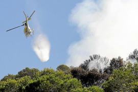 El fuego ha arrasado 47 hectáreas este año en las Pitiusas, 15 veces más de superficie que en 2016