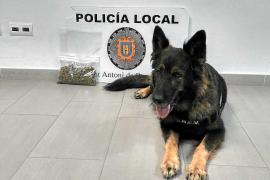 La Policía Local de Sant Antoni detiene a un hombre por llevar marihuana y cristal