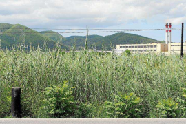 Vila se compromete a hacer el año que viene el Plan Especial para proteger ses Feixes des Prat de Vila
