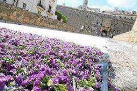 Sal, carbón y flores en el Portal de ses Taules
