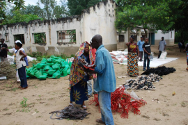 Una epidemia de cólera causa medio millar de muertes en la República Democrática del Congo