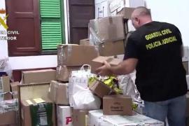 Un detenido y un registro en Ibiza en un golpe contra el tráfico de anabolizantes con 41 arrestados