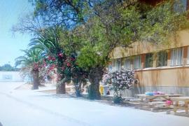 Una alumna de Formentera con síndrome de Down no cuenta con una ATE de apoyo