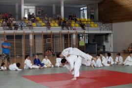 La hora de los luchadores de las categorías sénior y cadete