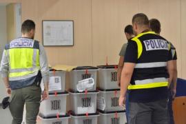 """Sindicatos policiales pedirán acciones penales contra Trapero por su """"bochornosa"""" actuación y """"pasividad"""""""