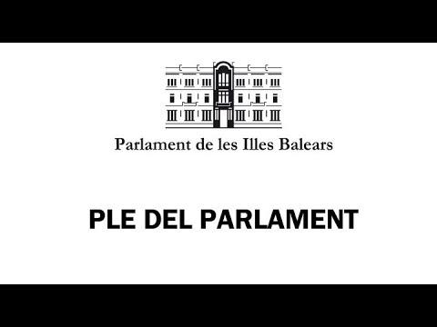 Un espontáneo irrumpe gritando en el Parlament