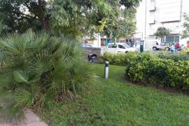 Defecaciones en jardines publicos