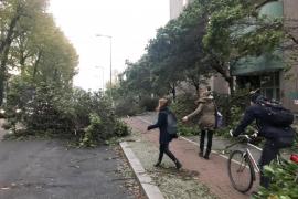 Seis muertos por un temporal que ha afectado al norte y el este de Alemania