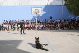 Demostración de la unidad canina de la Policía Local de Sant Antoni en el IES Quartó de Portmany (Fotos: Arguiñe Escandón).