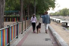 Más de 50.000 personas piden que los 'pepos' o perros de protección acompañen siempre a víctimas de violencia de género