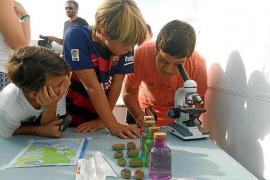 Actividades deportivas, culturales y educativas dan vida al festival Save Posidonia Project