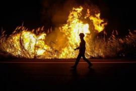 Protección Civil eleva a 38 los fallecidos por los incendios en Portugal