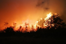 Los incendios del fin de semana en Galicia arrasaron unas 35.500 hectáreas, más que 2014, 2015 y 2016 juntos