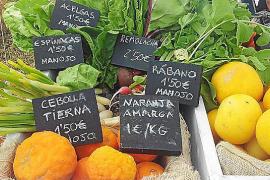 La Ibiza sostenible vuelve al Mercat de Forada