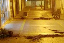 Un detenido por destrozar el mobiliario urbano del West End de Sant Antoni